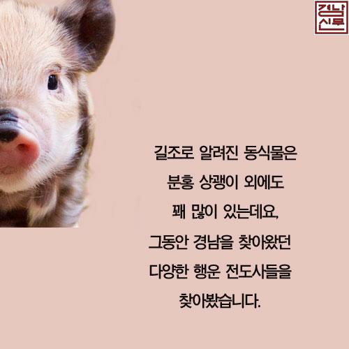 길조동식물3.jpg