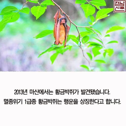 길조동식물7.jpg