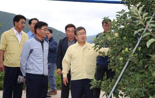 0823 박일호 밀양시장, 태풍 솔릭 대비 사과재배농가 현장 방문(1).JPG