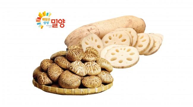 """0911 전국 GS수퍼마켓,""""밀양 농산물 산지 직송전"""" 열려!.jpg"""