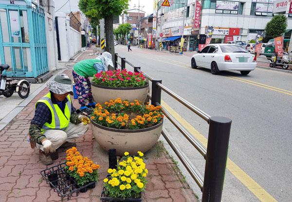 주요화단 여름 꽃 배부 식재.jpg