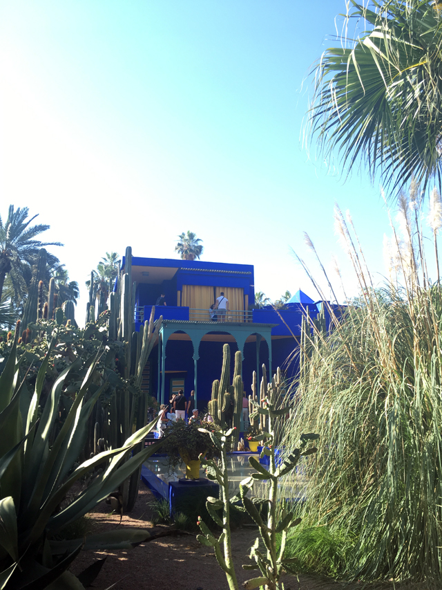 이브 생 로랑이 사랑했던 마조렐 정원.