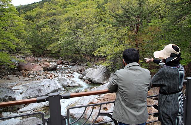 산청 대원사 계곡길 봄 오는 소리 (1).jpg
