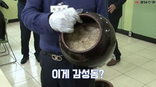 갬성 터지는 갬성돔, 어디까지 먹어봤니?(feat. 215년 전 감성돔식해)