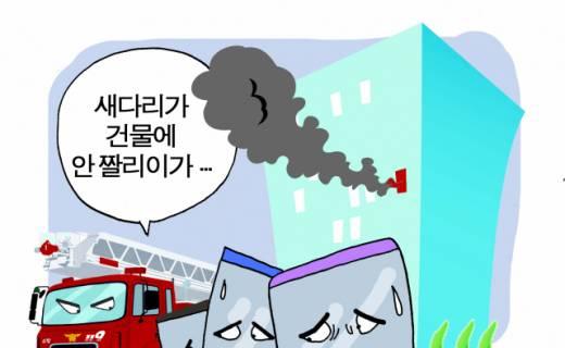 [경남말 소쿠리] (144) 짤(잘)리이다, 대이다, 다이다