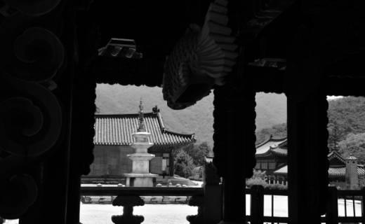 [사진과 시조로 읽는 한국의 석탑] (54) 문경 봉암사 삼층석탑